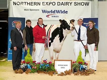2012 Grand Champion - Feizor Shottle L Melody